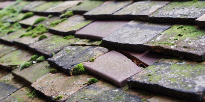 Heath Hayes roof repair costs
